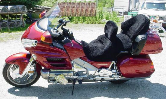 Sheepskin Motorcycle Seat Covers >> Black Sheep Trading Company - Custom Motorcycle Seatcover
